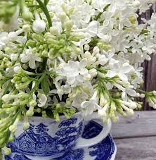 How To Revive Flowers In A Vase Enjoy Your Fresh Cut Lilacs Longer