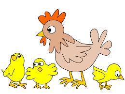 clipart hen with three chicken