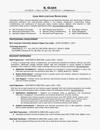 Php Programmer Resume Sample by Programming Resume Examples