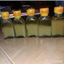 Minyak Bulus Asli Papua jual agen toko minyak bulus asli di harga discount murah