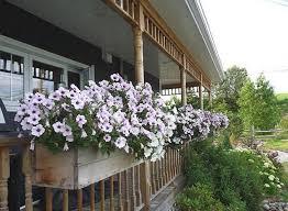 wonderful deck railing planters home decorations insight