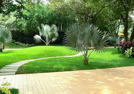 gardening landscaping ideas u2013 sdgtracker