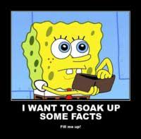 Spongebob Wallet Meme - spongebob wallet meme generator captionator caption generator