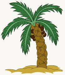 how to draw a palm tree easy drawing guides