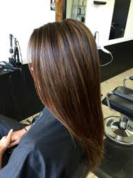 light brown highlights on dark hair incredible light brown highlights for dark hair women medium on of