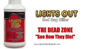 What Kills Bed Bugs Naturally How To Kill Bed Bugs Naturally Watch Bed Bugs Die No Audio