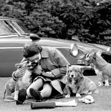 Queen Elizabeth Ii Corgis by In Pictures Queen Elizabeth Ii At 90 In 90 Images Bbc News