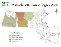 Massachusetts forest images Forest legacy program jpg