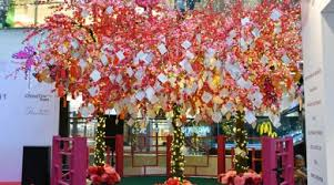 wishing tree chinatown wishing tree serious about preschool
