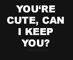 best 25 flirty quotes for her ideas on pinterest fun flirty