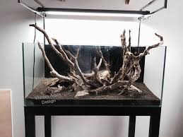 aquascaping layouts with stone and driftwood why should you buy natural driftwood for your aquarium exoaquaristic