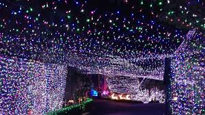500 000 lights family u0027s christmas display sets world record wunc