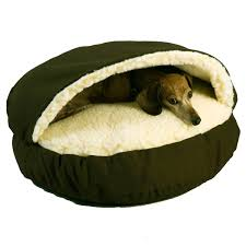 Igloo Dog Bed Orthopedic Dog Beds Best Orthopedic Beds For Dogs Petco