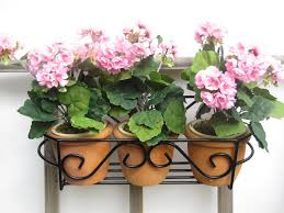 Planters That Hang On The Wall Balcony U0026 Wall Planters No Space For Plant Pots Get Them Of The