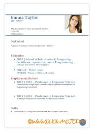 Sample Resume For Job by Cv Template For Job Seekers