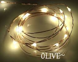 copper wire lights etsy