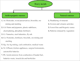 sustainability free full text bioremediation of heavy metals