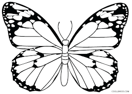 coloring butterfly design a butterfly colouring page x