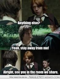 Ron Meme - harry potter memes ron and harry fight wattpad