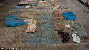 How To Make A Rug Out Of Plastic Bags Dead Whale Found To Have 30 Plastic Bags In Its Stomach Daily