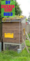 Backyard Chicken Coop Ideas by 565 Best Chicken Coops Images On Pinterest Backyard Chickens