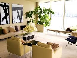 home design ideas nz lovely earthy home decor the house ideas