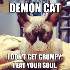 Demon Memes - demon cat i don t get grumpy i eat your soul demon cat quickmeme