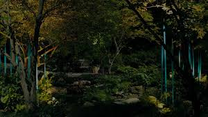 houston landscaping outdoor lighting landscape lighting and