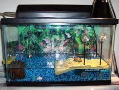 zuiniubi 250g pebble for aqurium fish turtle tank