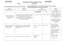 best photos of individual work plan template individual