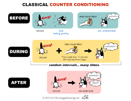 classical conditioning notes from clicker expo boogie u0027s blog
