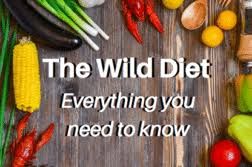 a beginner u0027s guide to a leptin diet defendyourhealthcare org