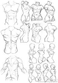 Anatomy Of Human Body Sketches 433 Best Drawing Female Body Images On Pinterest Drawing Tips
