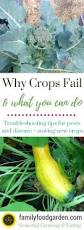why your crops are dying u0026 what you can do about it