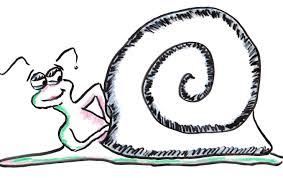 what do snails think about when having u2013 phenomena curiously