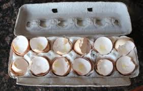 ground eggshells how to make eggshell calcium and why you d want to