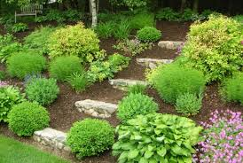 Landscaping Ideas For Sloped Backyard Triyae Com U003d Backyard Hill Landscaping Ideas Pictures Various