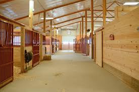 horse barn layouts floor plans building horse stalls 12 tips for your dream horse barn wick