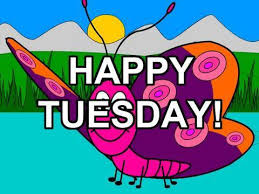happy tuesday free funny greetings cards flash animation