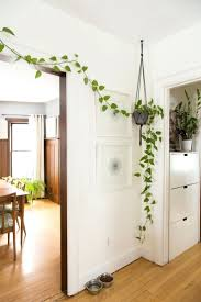 new ideas for home decoration decorations artificial plants for home decor online home