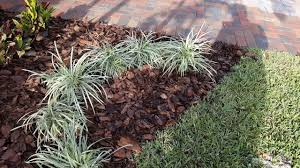 Home Depot Flower Projects - pine bark nugget project frome home depot youtube