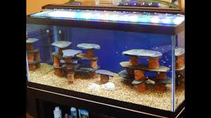 diy how to make a rock slate structure for a fish tank aquarium