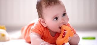 philips avent teething your baby s teeth