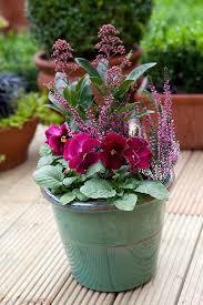 the 25 best autumn garden pots ideas on pinterest