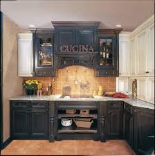 Painted Cabinet Ideas Kitchen House Impressive Matt Black Kitchen Cupboard Paint Tags Painted