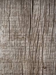 Decorative Laminate Flooring Free Images Table Tree Branch Coffee Texture Plank Leaf