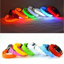 7 Color 3 Size Glow LED Dog Pet Cat Flashing Light Up Nylon Collar