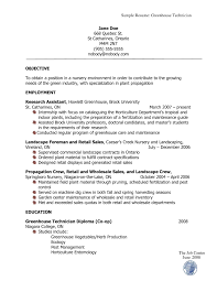 how resumes should look resume for your job application