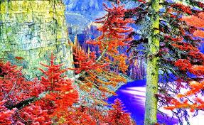 forces nature leaves autumn mountain lake nature paradise