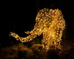 National Zoo Lights by Best Places To See Christmas Lights From D C To Las Vegas Cnn